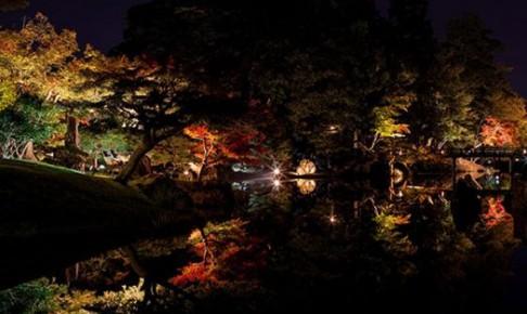 free-photo-gak-kinsyurito